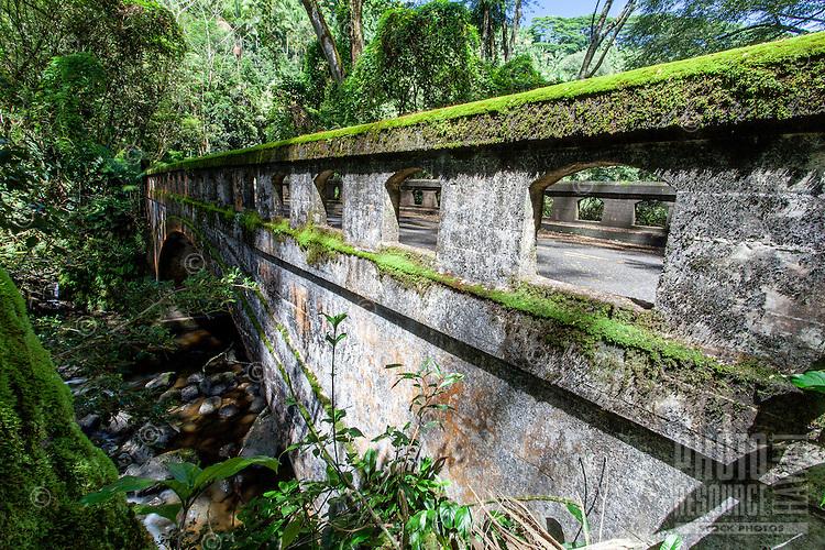 Old bridge with green moss on its railing in Honomu, Big Island.