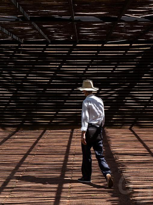 The interesting visitor area of Banteay Srei Temple complex. Cambodia