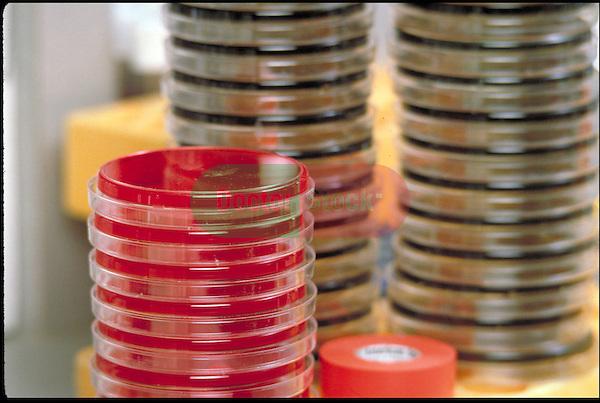 testing, stacks of petri dishes
