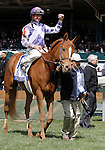 LEXINGTON, KY - APRIL 09: #1 Weep No More and jockey Corey Lanerie after winning the 79th running of the Central Bank Ashland (Grade 1) $500,000 at Keeneland race course for owner Ashbrooke Farm (Glenn Bromagen) and trainer George Arnold II.  April 9, 2016 in Lexington, Kentucky. (Photo by Candice Chavez/Eclipse Sportswire/Getty Images)