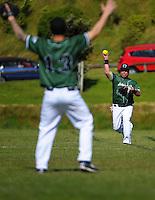 141115 Softball - Island Bay v Johnsonville Premier Two Men