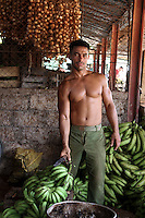 A man offers some bananas in a small market for vegetables and fruits  in downtown Havana