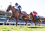 November 1, 2019: Sharing, ridden by Manuel Franco, wins the Breeders' Cup Juvenile Fillies Turf on Breeders' Cup World Championship Friday at Santa Anita Park on November 1, 2019: in Arcadia, California. Alex Evers/Eclipse Sportswire/CSM