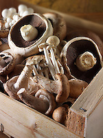 Fresh mixed whole  mushrooms