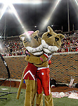 Houston Cougars team mascots in action during the game between the University of Houston Cougars and the Southern Methodist Mustangs at the Gerald J. Ford Stadium in Dallas, Texas. SMU defeats Houston 72 to 42...