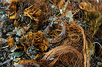 GERMANY, Hamburg, recycling of electronical scrap and old consumer goods at company TCMG, the trash is collected by the urban waste disposal system and than processed and separated here after metals like copper and plastics for further recycling and reuse, by law is not allowed to export e-scrap to africa and other countries, copper cable