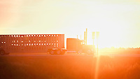 The sun sets behind a cattle truck that is transporting beef cattle to slaughter at a meat packing plant in Garden City , Kansas.