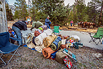 Cowboys packing gear for horsepacking trip into the John Muir Wilderness, Sierra National Forest, on the western slope of the Sierra Nevada, California