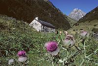 Europe/France/Midi-Pyrénées/65/Hautes-Pyrénées/Env Ste-Marie-de-Campan: Pic du Midi-Bigorre et vallée Gripp