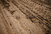 Mendota, California<br /> November 18, 2014<br /> <br /> Drought and water issues in California's central valley.