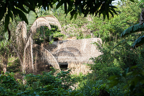 Xingu River, Para State, Brazil. The Volta Grande; Aldeia Terra Wangã da Volta Grande - Maia, Arara ethnic group. Traditional house.