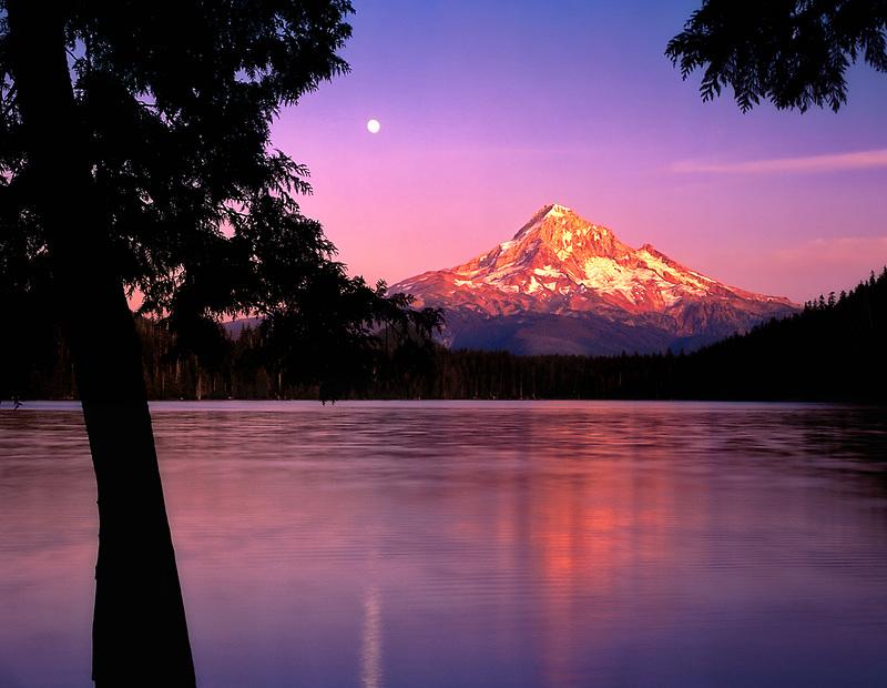 Lost Lake and Mount Hood with moonrise. Oregon