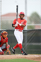 August 14, 2008: Alex Oliveras (23) of the GCL Reds.  Photo by: Chris Proctor/Four Seam Images