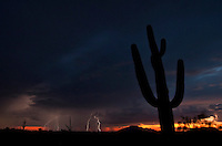 """Lightning storm in Southern Arizona. It got much more impressive later in the evening, but by that time I'd already been told to """"move along"""" by border patrol and sheriff's deputies on several occasions. Apparently landscape and wildlife photography are very suspicious activities to be engaged in within a 100 miles of the border."""