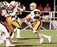 Ralph Dieter Brock HamiltonTiger Cats quarterback. Copyright photograph Scott Grant