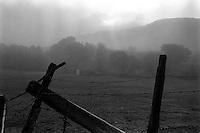 fence, fog, Who knows? 1987  &#xA;<br />