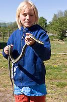 Kind, Junge mit einer harmlosen Ringelnatter, Ringel-Natter, Natter, Natrix natrix, Grass Snake, Couleuvre á collier