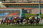 ARCADIA, CA  OCT 3:  The field at the start of the City of Hope Mile Stakes (Grade ll) on October 3, 2020 at Santa Anita Park in Arcadia, CA.(Photo by Casey Phillips/Eclipse Sportswire/CSM.)