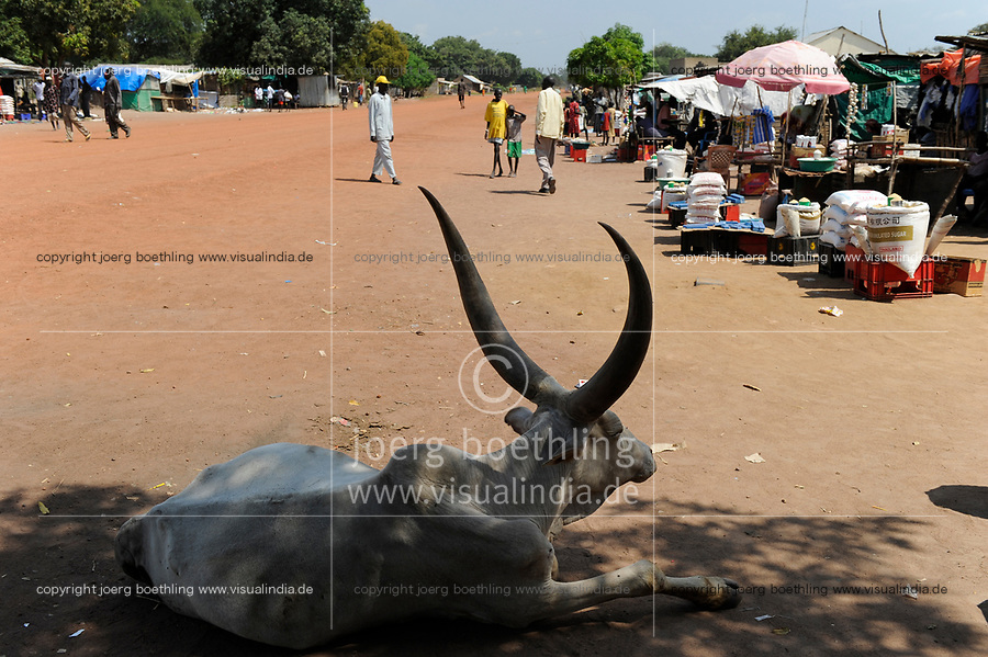 OUTH SUDAN  Bahr al Ghazal region , Lakes State, town Cuibet, traffic, laying cow with big horns / SUED-SUDAN  Bahr el Ghazal region , Lakes State, Cuibet, Strassenverkehr
