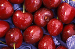 close-up of fresh cherries