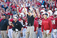 STANFORD, CA -- October 6, 2012: Team members react as the Cardinal tie the game near the end of the fourth quarte of the Stanford vs <br /> Arizona football game Saturday afternoon at Stanford Stadium.<br /> <br /> Stanford won 54-48.