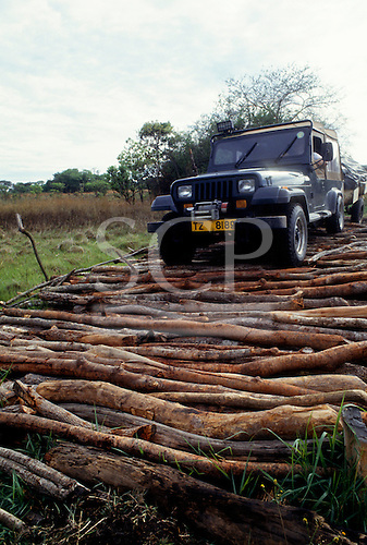 Chipundu, Zambia. Four wheel drive Jeep Crossing a precarious wooden bridge made of loose logs.