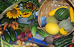 Winning vegetable display at Cheshire Fair in Swanzey, New Hampshire USA