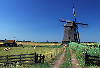 windmill, Netherlands, Schermerhorn, Holland, Noord-Holland, Europe, Windmill on a farm in the scenic countryside in Schermerhorn. Sheep grazing in the pasture.