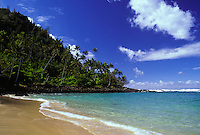 Beach on the Island of Kauai