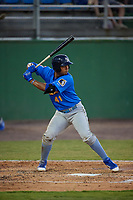 Myrtle Beach Pelicans Wladimir Galindo (41) at bat during a Carolina League game against the Potomac Nationals on August 14, 2019 at Northwest Federal Field at Pfitzner Stadium in Woodbridge, Virginia.  Potomac defeated Myrtle Beach 7-0.  (Mike Janes/Four Seam Images)