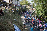 Stage 19 from Bourg-en-Bresse to Champagnole (167km)<br /> <br /> 107th Tour de France 2020 (2.UWT)<br /> (the 'postponed edition' held in september)<br /> <br /> ©kramon