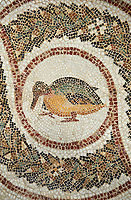 Picture of a Roman mosaics design depicting a bird, from the ancient Roman city of Thysdrus. 3rd century AD. El Djem Archaeological Museum, El Djem, Tunisia.