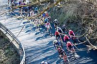 peloton descending the Colle del Giovo<br /> <br /> 112th Milano-Sanremo 2021 (1.UWT)<br /> 1 day race from Milan to Sanremo (299km)<br /> <br /> ©kramon