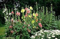 HS59-001c  Flower Garden