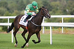 DUBLIN, IRELAND - SEPTEMBER 10: Landfall #3, ridden by Shane Foley and trained by K J Condon, wins the Willis Champions Juvenile Stakes on Champion Stakes Day at Leopardstown Race Course on September 10, 2016 in Dublin, Ireland. (Photo by Aindreas Lynch/Eclipse Sportswire/Getty Images)