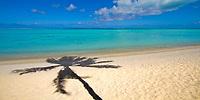 Palm tree shadow on a white sand beach with turquoise lagoon water on Bora Bora island, a honeymoon destination, near Tahiti, Polynesia, Pacific Ocean