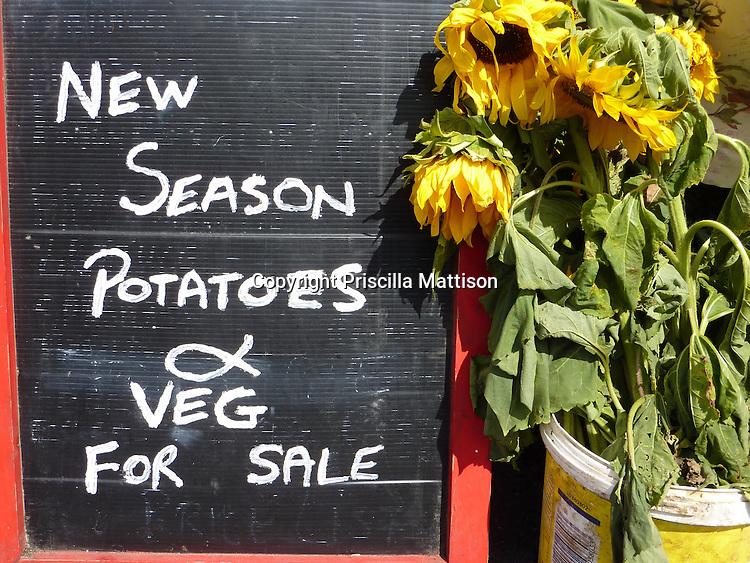 Kinvara, Republic of Ireland - July 17, 2010:  A sign beckons buyers at a farm market.