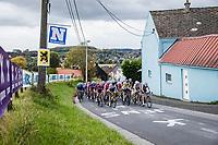 peloton with  Annemiek Van Vleuten (NED/Mitchelton-Scott) up the Valkenberg<br /> <br /> 17th Ronde van Vlaanderen 2020<br /> Elite Womens Race (1.WWT)<br /> <br /> One Day Race from Oudenaarde to Oudenaarde 136km<br /> <br /> ©kramon
