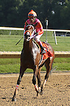 July 11, 2015: Calamity Kate, Edgar Prado up, wins the Grade III Delaware Oaks, one and one sixteenth miles for 3 year old fillies at Delaware Park in Stanton DE. Trainer is Kelly Breen. Joan Fairman Kanes/ESW/CSM