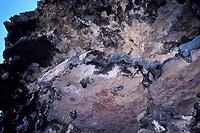 pictographs or ancient rock paintings by Caquetios (Caquetio Arawak Indians), on a cave ledge, Boca Onima, Bonaire, Netherland Antilles (Dutch ABC Islands) (Caribbean, Atlantic)