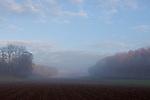 Europa, DEU, Deutschland, Baden-Wuerttemberg, Schwaebische Alb, Kohlstetten, Morgenstimmung, Typische Landschaft, Nebel, Dunst, Natur, Umwelt, Landschaft, Jahreszeiten, Stimmungen, Landschaftsfotografie, Landschaften, Landschaftsphoto, Landschaftsphotographie, Wetter, Wetterelemente, Wetterlage, Wetterkunde, Witterung, Witterungsbedingungen, Wettererscheinungen, Meteorologie, Wettervorhersage, <br /> <br /> [Fuer die Nutzung gelten die jeweils gueltigen Allgemeinen Liefer-und Geschaeftsbedingungen. Nutzung nur gegen Verwendungsmeldung und Nachweis. Download der AGB unter http://www.image-box.com oder werden auf Anfrage zugesendet. Freigabe ist vorher erforderlich. Jede Nutzung des Fotos ist honorarpflichtig gemaess derzeit gueltiger MFM Liste - Kontakt, Uwe Schmid-Fotografie, Duisburg, Tel. (+49).2065.677997, ..archiv@image-box.com, www.image-box.com]