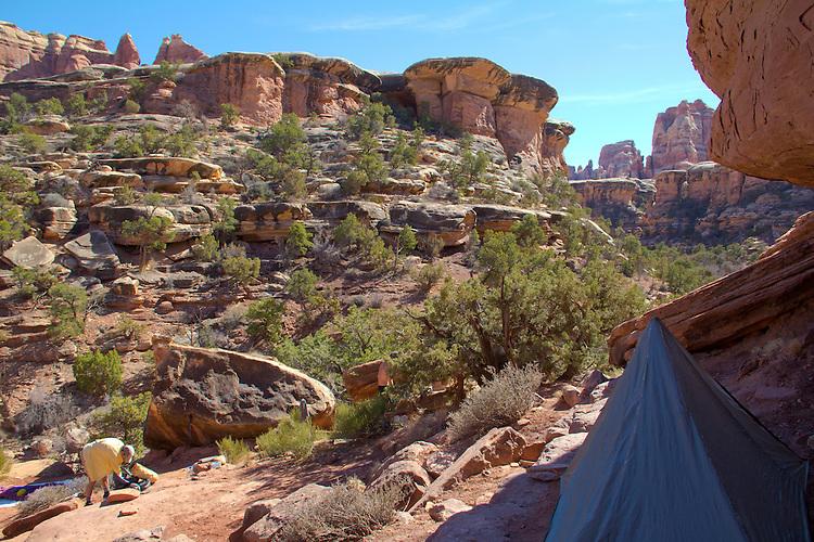 Canyonlands National Park, Utah, Backpacking, Chesler Park Trail, Elephant Canyon, the Needles District, Elephant Canyon campsite, EC2, Southwest, United States, USA,
