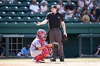 Umpire Mitch Leikam works a game between the Hickory Crawdads and the Greenville Drive on Sunday, August 29, 2021, at Fluor Field at the West End in Greenville, South Carolina. The catcher is David Garcia (13). (Tom Priddy/Four Seam Images)