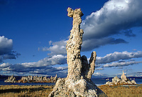 MONO LAKE with its mysterious TUFA TOWERS is home to many nesting & migrating  birds - EASTERN SIERRA