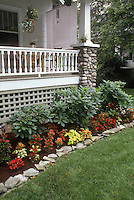 A variety of annual foliage plants coleus Solenostemon planted in garden bed next to house porch and lawn with foundation plantings, stone pillar, porch furniture, stone edging, hanging plants