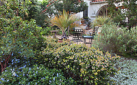 Small patio secluded by drought tolerant shrubs in Southern California front yard native plant garden