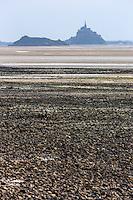 Europe/France/Normandie/Basse-Normandie/50/Baie du Mont-Saint-Michel/Saint-Jean-le-Thomas: La grève et la Baie du Mont Saint-Michel // France, Manche, Mont Saint Michel bay, Saint-Jean-le-Thomas: Mont Saint Michel bay
