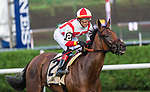 August 21, 2021: Technical Analysis #2, ridden by jockey Jose L. Ortiz win the Grade 2 Lake Placid Stakes on the turf at Saratoga Race Course in Saratoga Springs, N.Y. on August 21st, 2021. Rob Simmons/Eclipse Sportswire/CSM