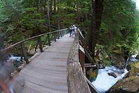 Foot Bridge Over Ladder Creek Falls, North Cascades National Park, Washington, US