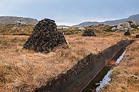 Stacks of peat cuttings, Isle of Harris, Outer Hebrides, Scotland